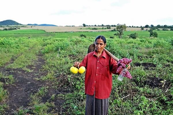 mujeres-indias-trabajando6