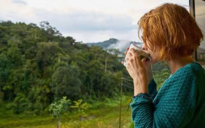 ¿Realmente tienen el café y el té beneficios?