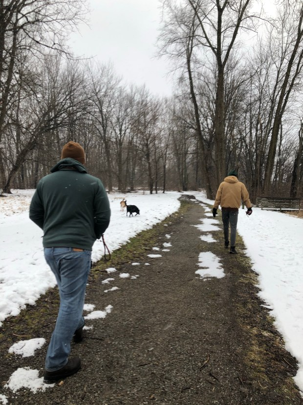 Walking the dogs at park in snow