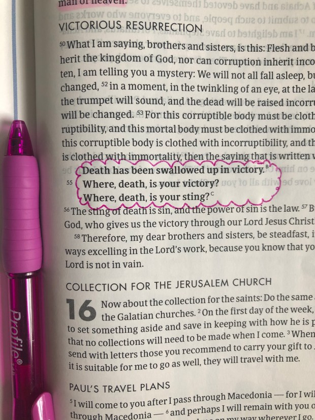 Highlighted bible verse and pen