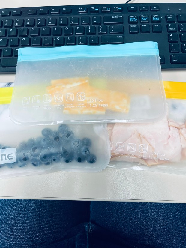 Cheese, blueberries, and turkey- lunch ideas