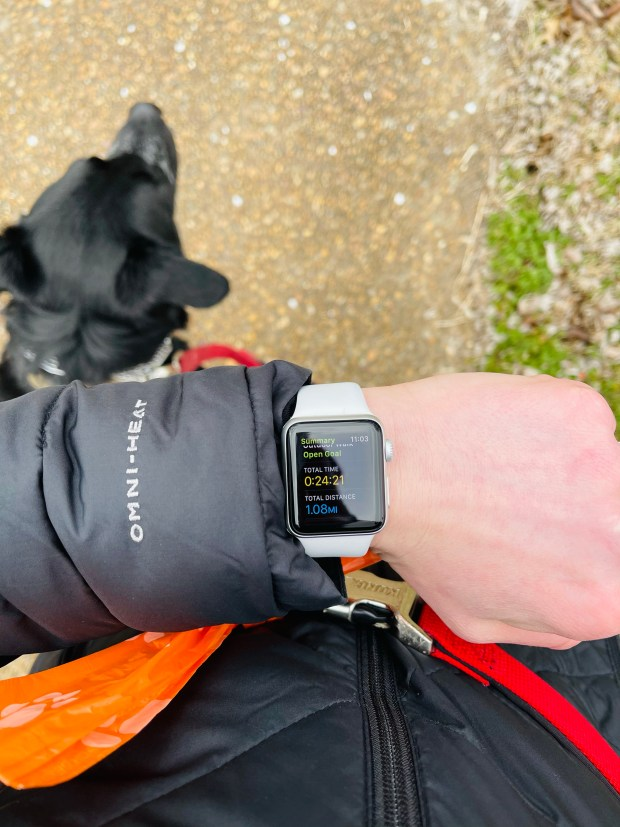 Walking the dog and apple watch statistics
