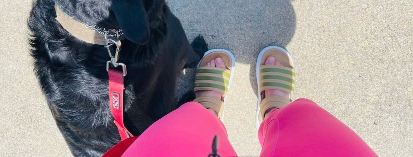 Walking the dog and new adidas