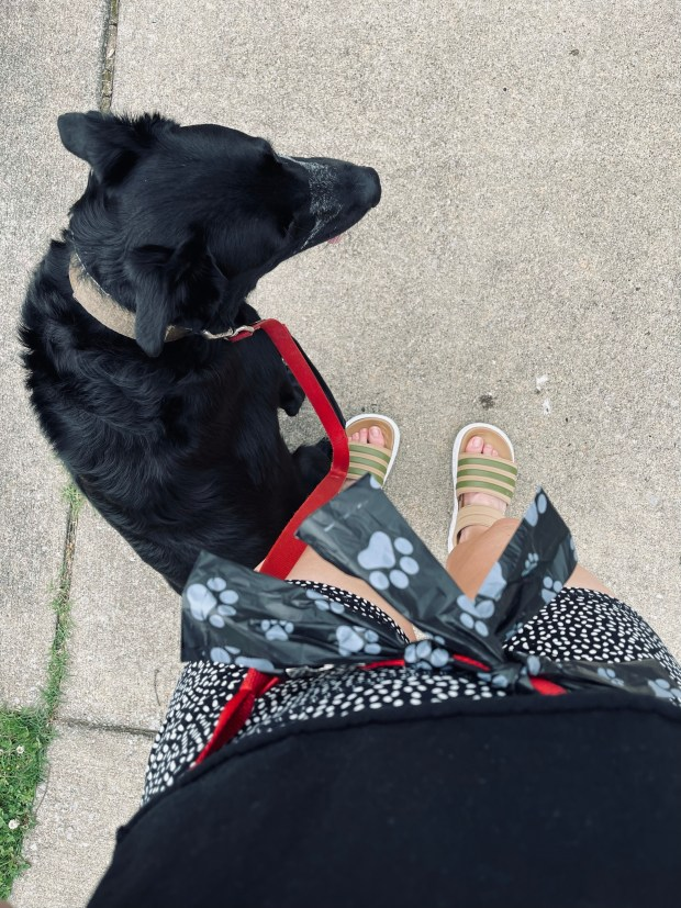 taking dog on walk in active gear