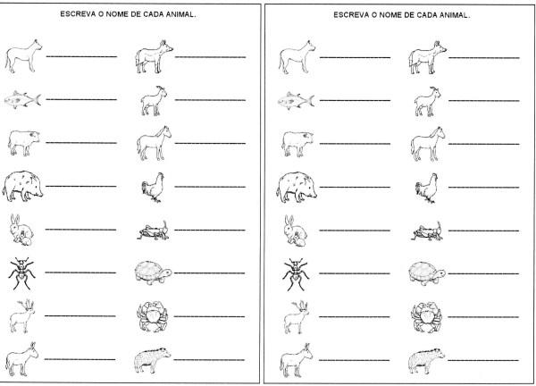 Escrita de palavras-Nomes dos animais