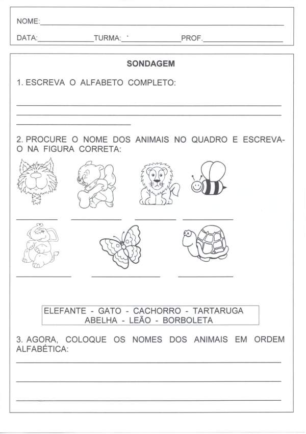 Sondagem Língua Portuguesa-Alfabeto Leitura