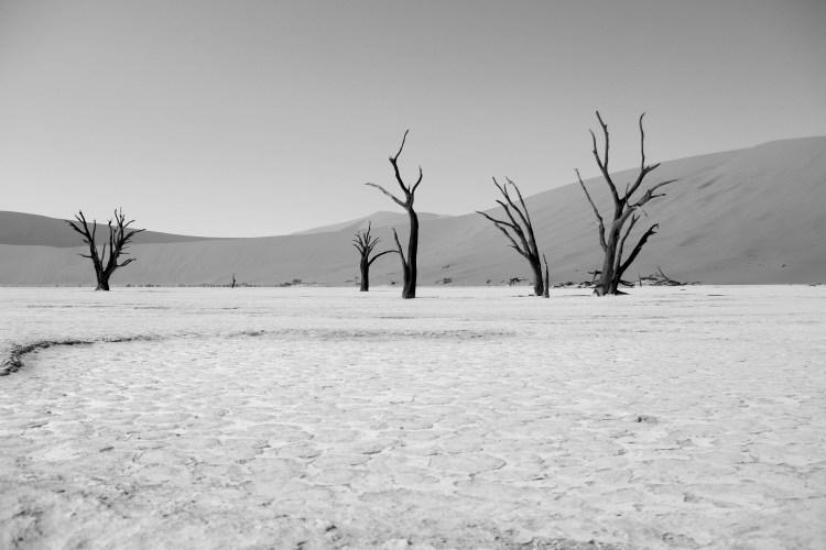 Namibia landscape-5