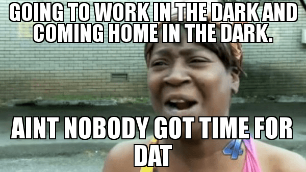 15 Working From Home Memes That Ll Brighten Up Your Day By