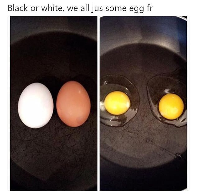 This Egg Meme Just Opened People S Eye About Race By Matthew