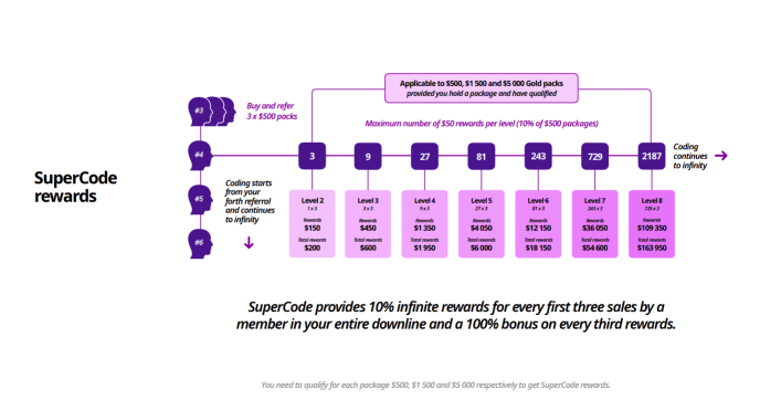 Super One Business Plan Super Code Income