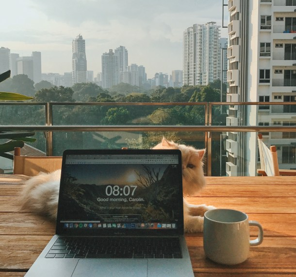 Any morning, teleworking due to coronavirus, should start with a break