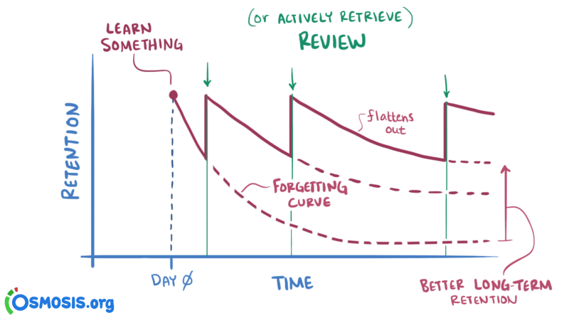 What is a spaced repetition system? How does it maintain your knowledge?