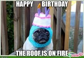 Happy Birthday Dog Meme For Funny Birthday By Ku Li Medium