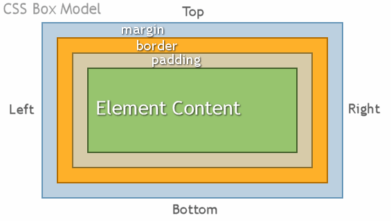 css box model: чем отличаются margin от padding