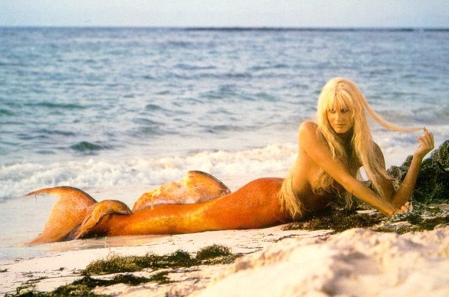 Image result for little mermaid blonde vs splash