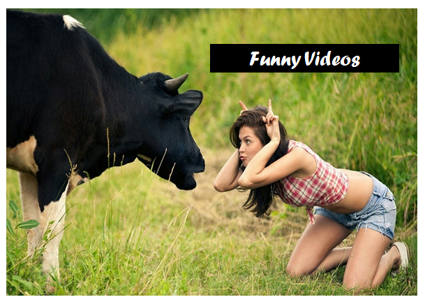 Image of: Comedy People Are Searching For Youtube Videos More That Is Why Am Going To Share Some Best Youtube Videos Laugh To Tears Youtube Funny Videosmost Funniest Videosyoutube Videos