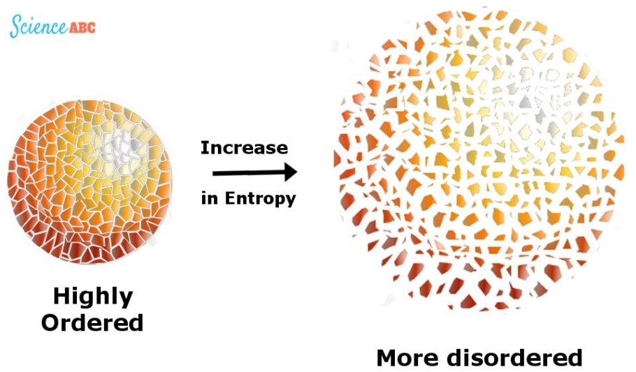The role of entropy in the brain/mind system | by Ludovic Pain | Medium