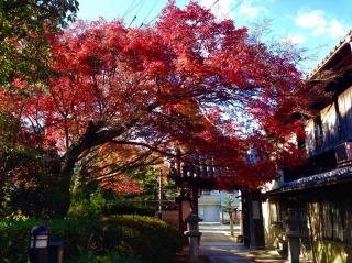 みろく院紅葉