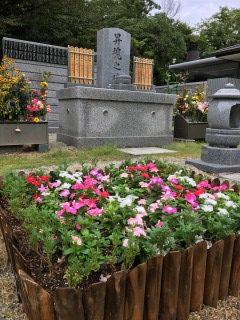 合同慰霊碑の花壇