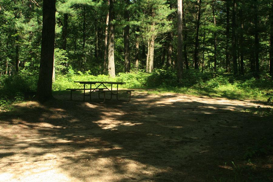 Site 101