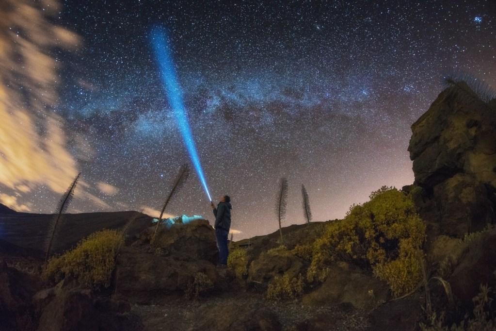 Sterne und Natternkopf im Teide-Nationalpark auf Teneriffa
