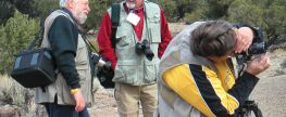 Finding the Best Photo Vest