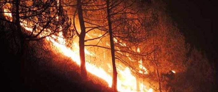 हर साल की तरह इस साल भी धधक रहे हैं उत्तराखंड में जंगल, बेबस है सरकार