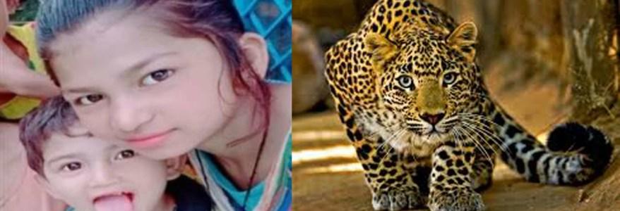 उत्तराखंड : छोटे भाई पर झपटा तेंदुआ, बहन ने भाई को सीने से चिपका कर बचाया, खुद गंभीर घायल