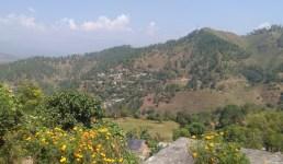 Uttarakhand असोज का महीना, पुवे, लुट्टे, पल्ट और पहाड़ की जीवट किसानी, भुवन बिष्ट का शानदार आलेख पढ़िए