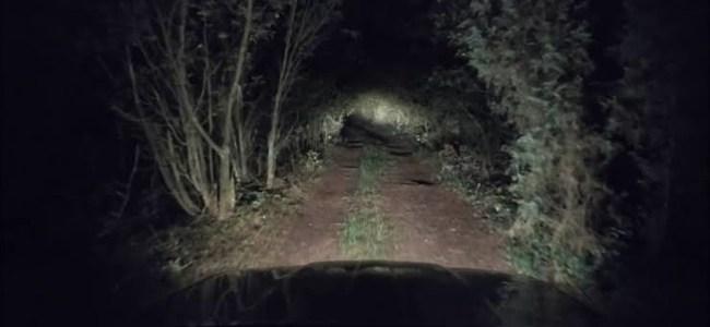 Uttarakhand आधी रात को जंगल से आई दर्दनाक चीख की आवाज, लोग पहुंचे तो क्या हुआ पढ़िए