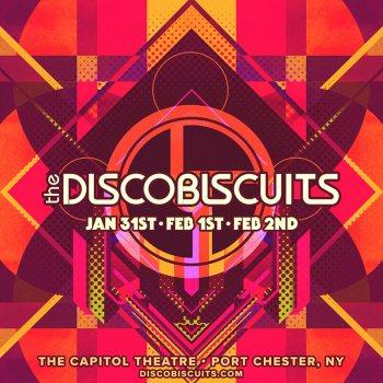 Disco Biscuits Cap 2019.jpg