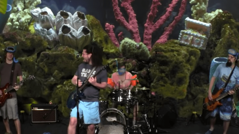 Pigeons Playing Ping Pong Perform on Adult Swim's 'Fish Center