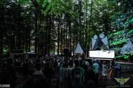 Disc Jam Music Festival 2019 (317 of 323)