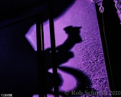 Trey Anastasio Band - Capitol Theatre 1-10-2020 (14 of 43)