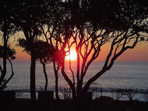 Haiku: A Plot Of Land By The Sea...