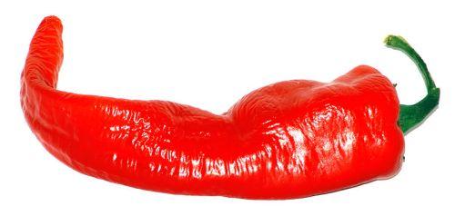 Chilli pepper-Large Cayenne