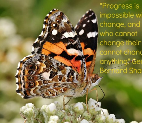Motivation Mondays: Change - Even butterflies change from larvae to lovely