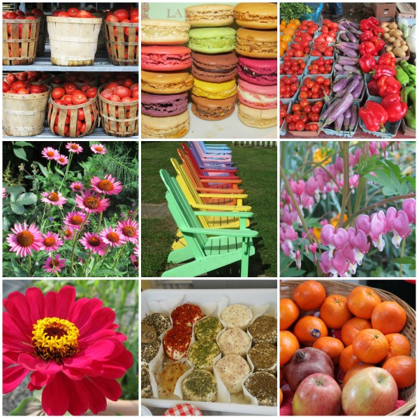 Weekly Photo Challenge: FRESH!