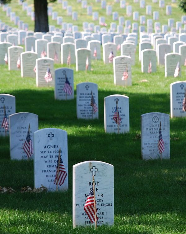 Memorial Day: Saluting & Honoring All Who Died In Service
