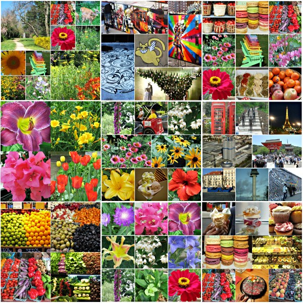 Weekly Photo Challenge: MUSE... Color is my Muse