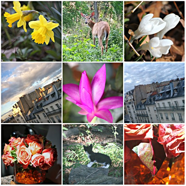 Weekly Photo Challenge: INSPIRATION