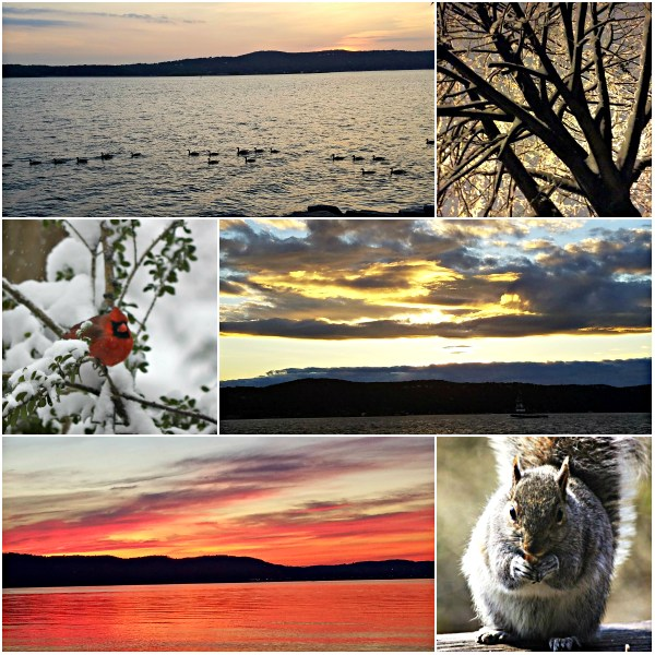 Weekly Photo Challenge: MAGIC - In Nature and beyond...