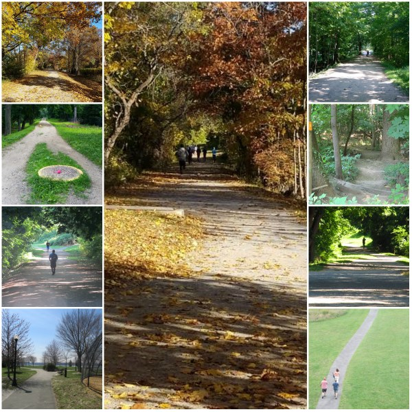 Weekly Photo Challenge: A PATH - The paths are many, the destination is the same...