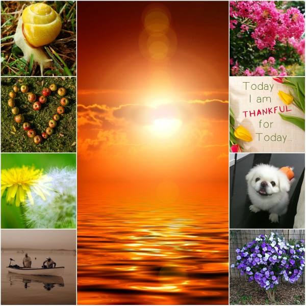 Motivation Mondays: TODAY - BE THANKFUL, BE PRESENT!