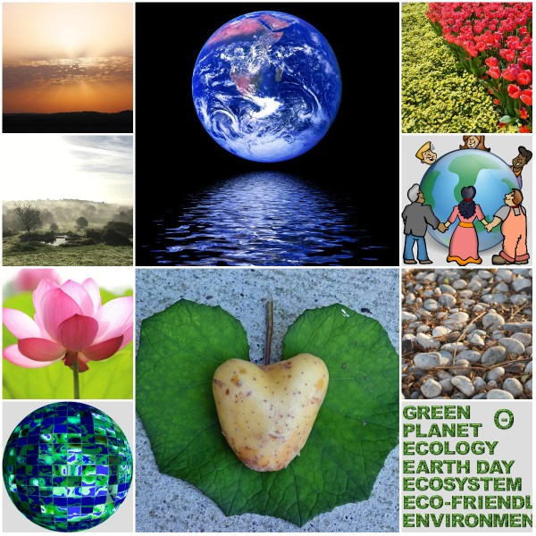 Motivation Mondays: Earth Day for Environmental & Climate Literacy
