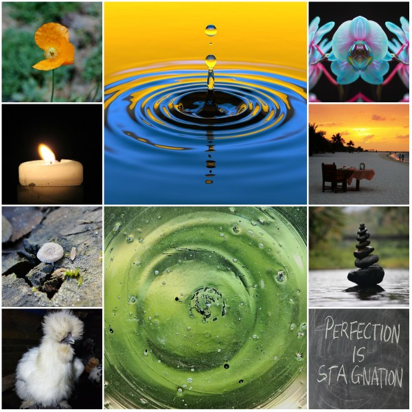 Motivation Mondays: Perfect Conditions