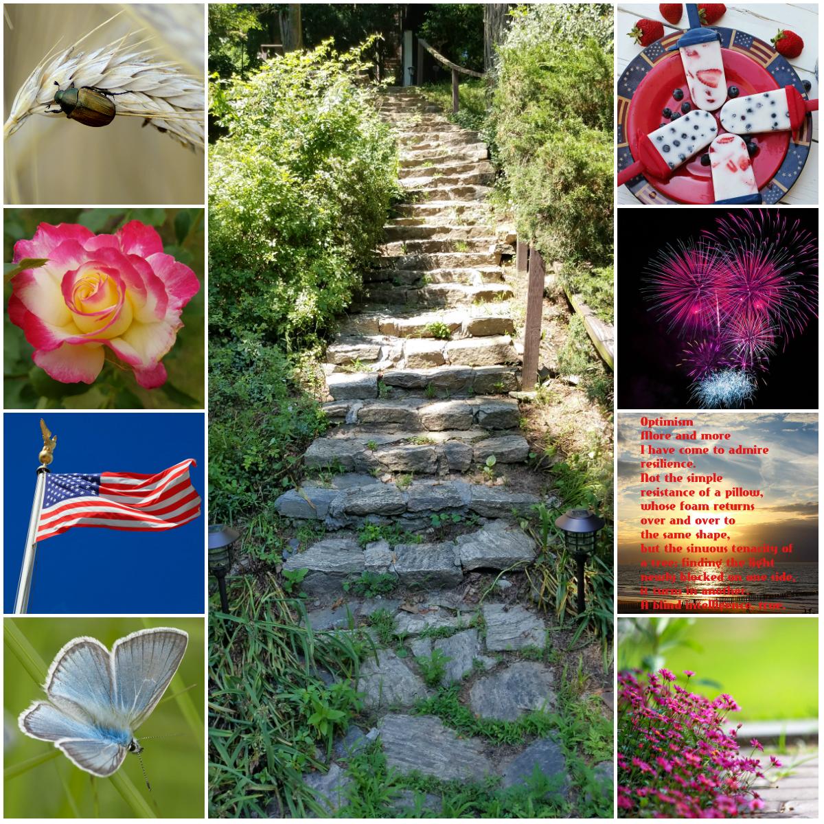 Motivation Mondays: Optimism. Life. Independence Day