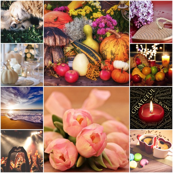 Motivation Mondays: Giving Thanks