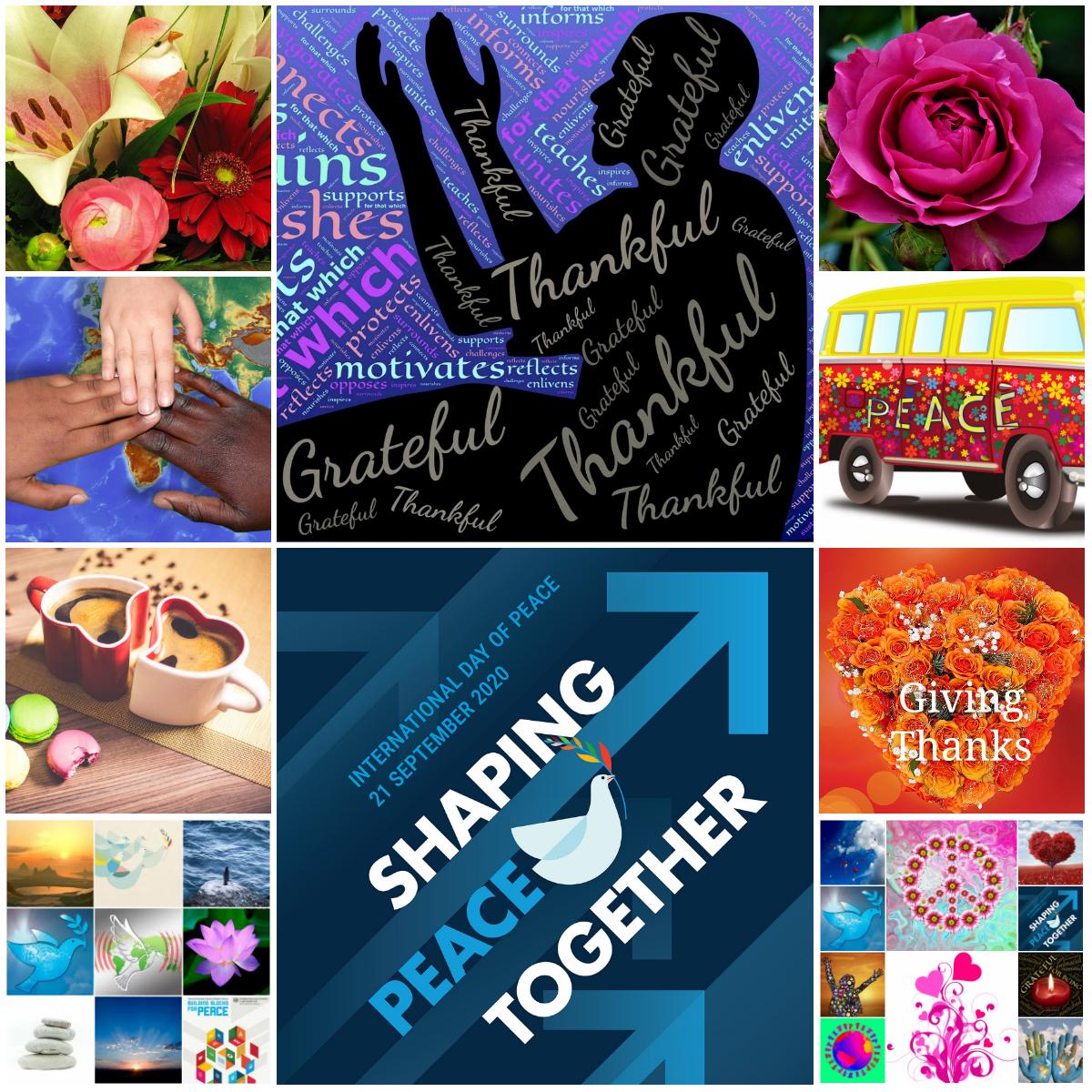 Motivation Mondays: International Day of Peace & World Gratitude Day