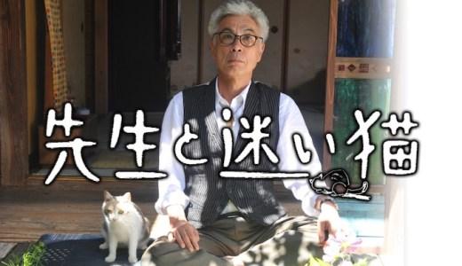 映画『先生と迷い猫』あらすじ・ネタバレ感想!失って初めて気づく大切さ。失踪した猫が地域の人々を繋ぐ物語